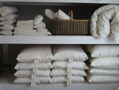 organic cotton/ ECO-Pure wool Pillows, neck rolls, cotton sheets and pillow cases and comforters