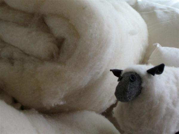All wool pillows are part of our wool renewal program.